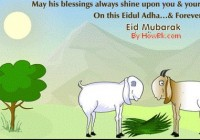 Eid UL Adha Islamic Festival 2014 - All about Eid in Islam [howpk.com]